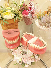 森本矯正歯科:矯正歯科矯正装置